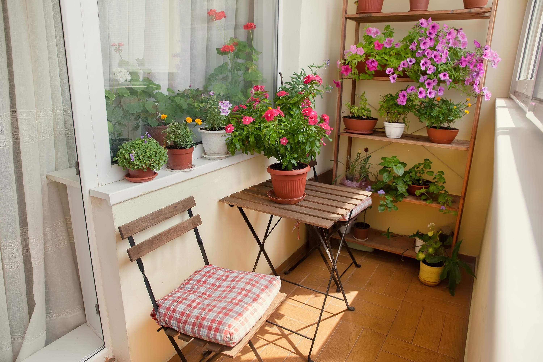 Trucos para decorar la terraza o balc n univision - Trucos para decorar ...