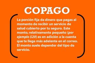 Glosario - Ley de salud - Copago