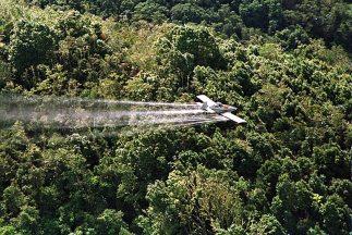 La avioneta con vuelo rasante arrojó una bolsa blanca que contenía 26 pa...