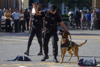 Un grupo de diputados dominicanos recomendó a la Policía ejecutar a los...