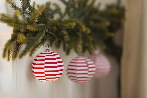 Los acentos rojos por naturaleza crean el ambiente festivo de la Navidad...