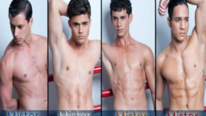 Ya hay cuatro guapos chicos que se disputarán por ver quien representa l...
