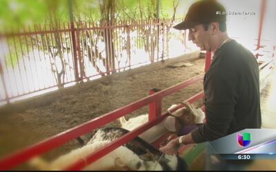 Luis González en la piel de un cuidador de animales