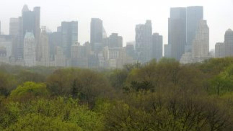 """Nueva York ocupa el tercer lugar entre las ciudades más """"verdes"""" de Esta..."""