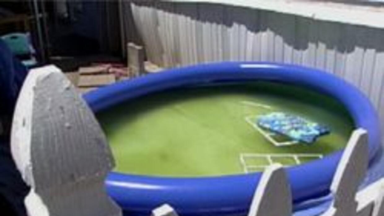 Alberca donde por poco se ahoga el niño