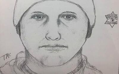 Retrato hablado de presunto agresor de ataque sexual en Rolling Meadows