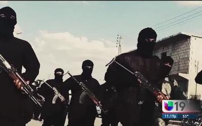Parte 1: Se buscan terroristas