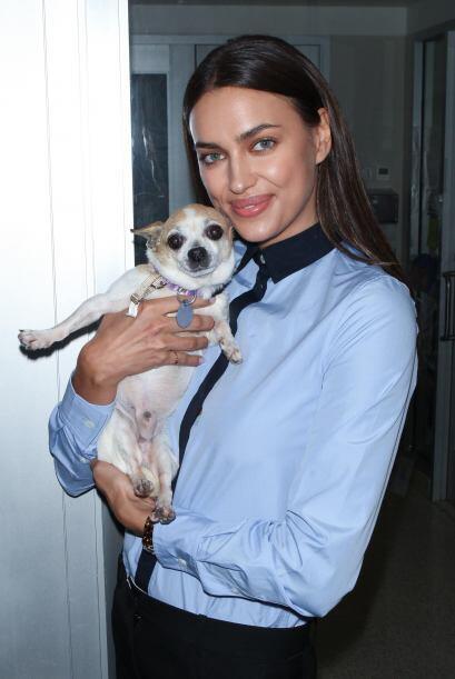 Irina quiere que cada uno de las mascotas de ASPCA sean adoptadas.