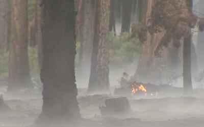 Incendio forestal destruyó 22 casas cerca de Carson City