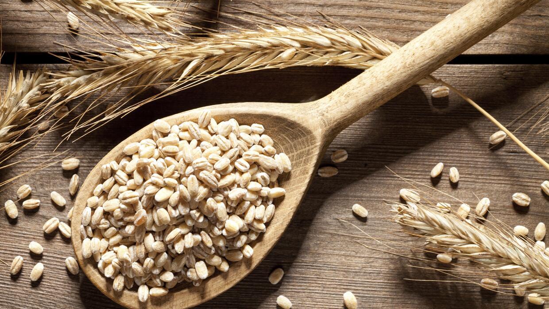 Si buscas opciones con más nutrientes, libres de gluten o con más aporte...