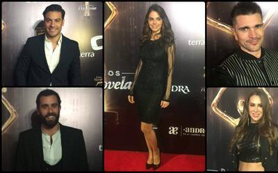 Cena de nominados a premios tvynovelas