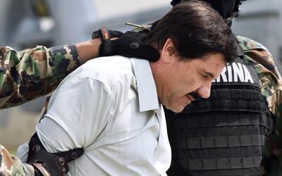 Perros del 'Chapo' Guzmán debían probar la comida del narcotraficante pa...