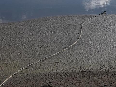Los bajos niveles de agua son visibles en la Reserva  Stevens Creek, en...