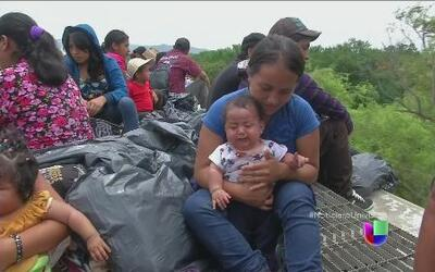 La desesperación de los migrantes en Al Punto