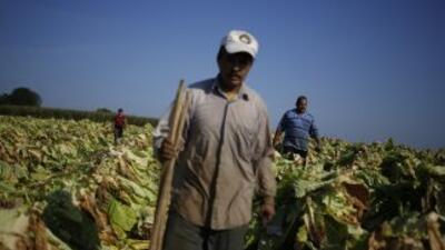 Cerca de 232 millones de migrantes internacionales impulsan con su traba...
