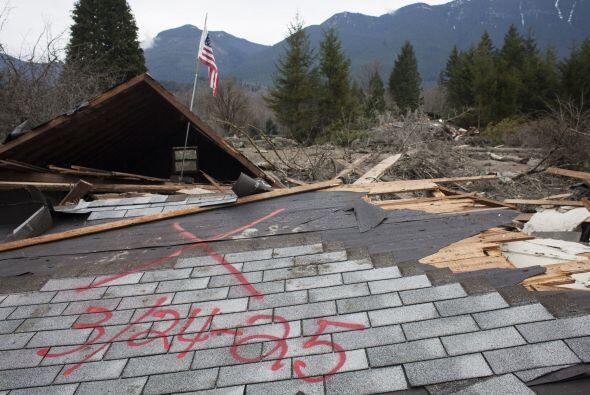 Además se cree que de las 49 estructuras que resultaron afectadas...