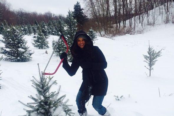 Tyra Banks prefiere tener un árbol más discreto.