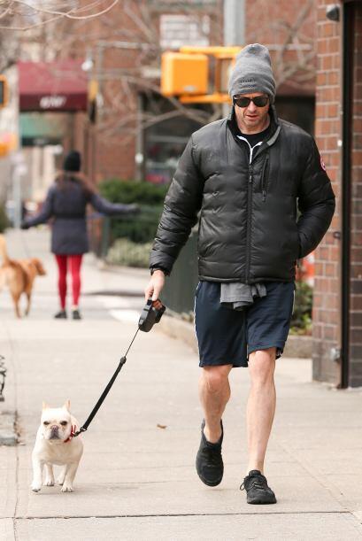 El actor tiene una bulldog francés que no se le despega ni un minuto, lo...