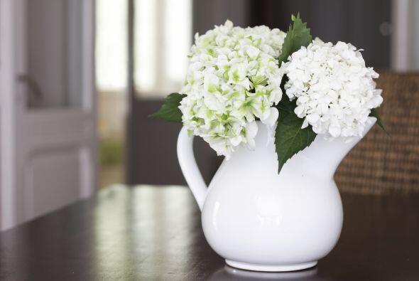 Recuerda que las flores, además de tener color aportan aroma a tu...