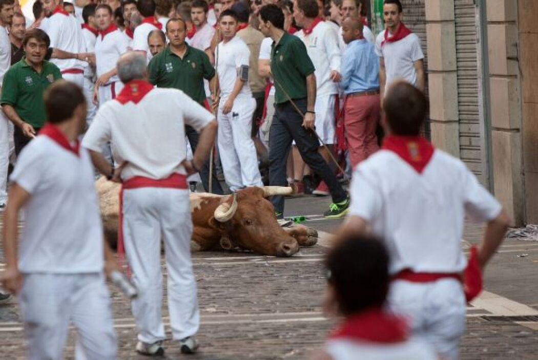 La manada de toros de cada encierro va acompañada de bueyes mansos que l...