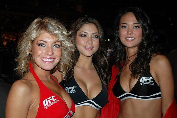 """Estas tres hermosas chicas son las """"Octagon Girls"""" de la UFC."""