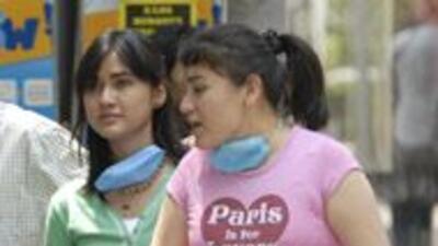 Las pérdidas en México por gripe porcina serían de $2,300 millones 8bfe5...