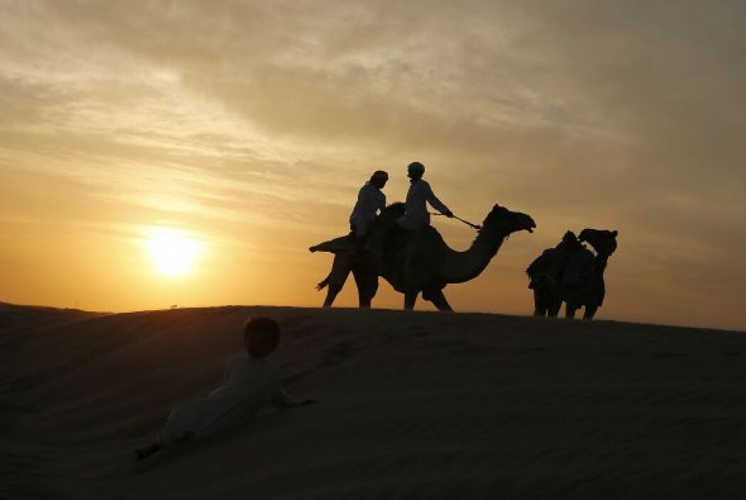 Un niño juega mientras los hombres del Emirato preparan sus camellos par...