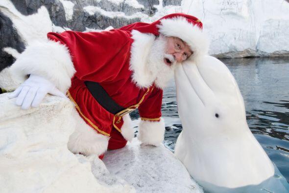 También estuvo de paseo por Alaska, con una encantadora ballena que segu...