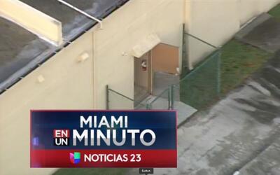 'Miami en un Minuto': evacuan el hospital de animales Pines West tras in...
