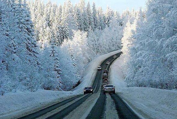 Una impresionante imagen de árboles totalmente cubiertos por la nieve en...