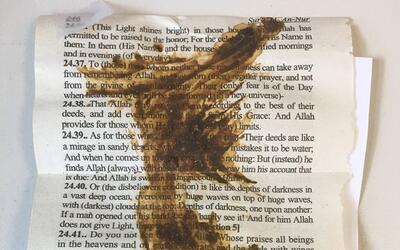 Heces en el Corán