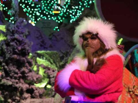 La navidad llegó a la ciudad, pero el Grinch no la quiere disfrut...