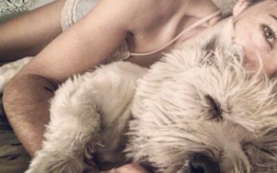Bárbara Mori junto a su adorado perro Ostin, del que ha compartid...