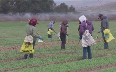 Nueva medida por un pago justo para campesinos