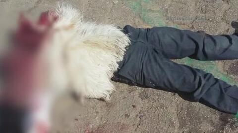 Le pegaron 600 tiros a un alcalde Mexicano frente a todo un pueblo