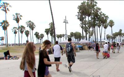 Leyes californianas protegerían a comunidad indocumentada de posibles de...