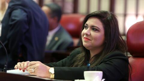 Senadora por el distrito de Mayagüez-Aguadilla.
