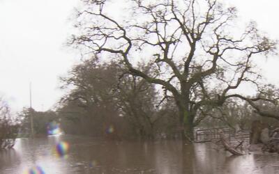 Lluvias dejan inundaciones en varias zonas de Sacramento
