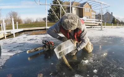 El videito: congelados en plena acción