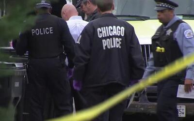 El cadáver de una mujer fue encontrado en un contenedor de basura en Bel...