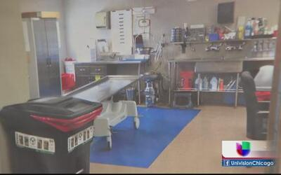 Controversia por cierre de morgue