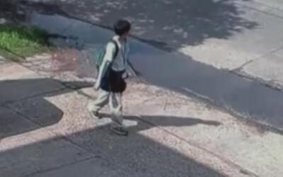 Autoridades piden ayuda a la comunidad para encontrar al agresor de Josu...