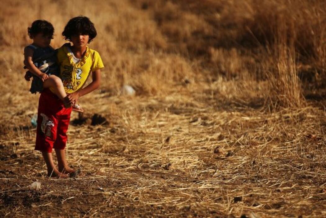 Ello ha confirmado el rápido deterioro de la situación humanitaria sobre...