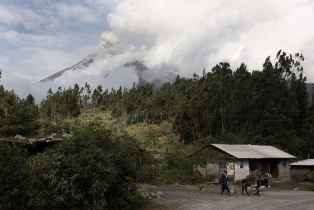 Uno de los geólogos del IG dijo a la agencia EFE que el pulso del volcán...