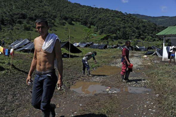 En el departamento de Arauca, en el noreste y fronterizo con Venezuela,...
