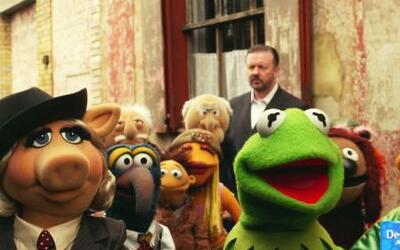 DAM Kermit - 'Muppets Most Wanted'