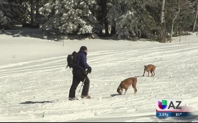 ¡Ya puedes divertirte haciendo ski!