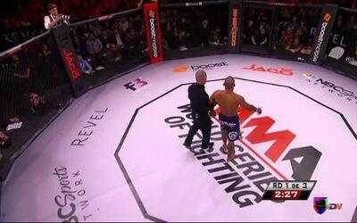 MMA Prueba