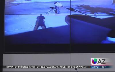 Polémico video de la muerte de perro pitbull