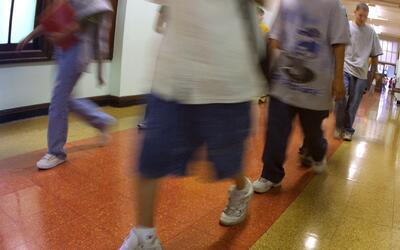 Chicago declara a sus escuelas públicas como territorio seguro para los...
